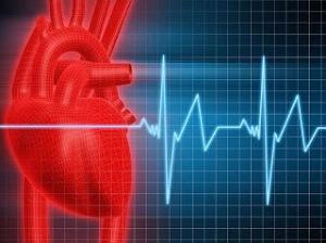 ritmo-cardiaco relajacion trabajo